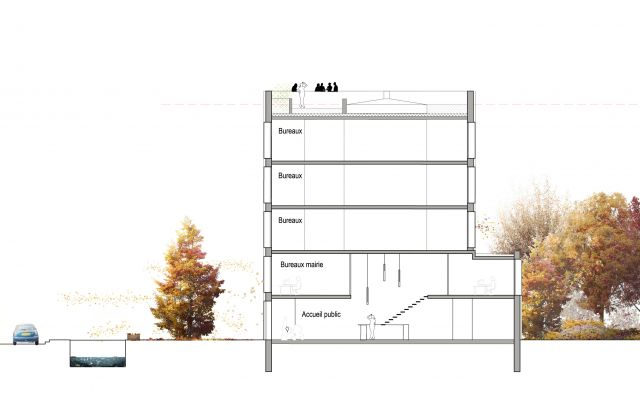 dealzua architectes